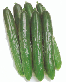 CucumberProgress