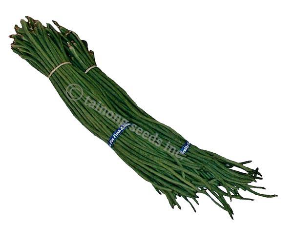 Dark Green Ching Long_