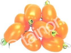 OrangePlumA